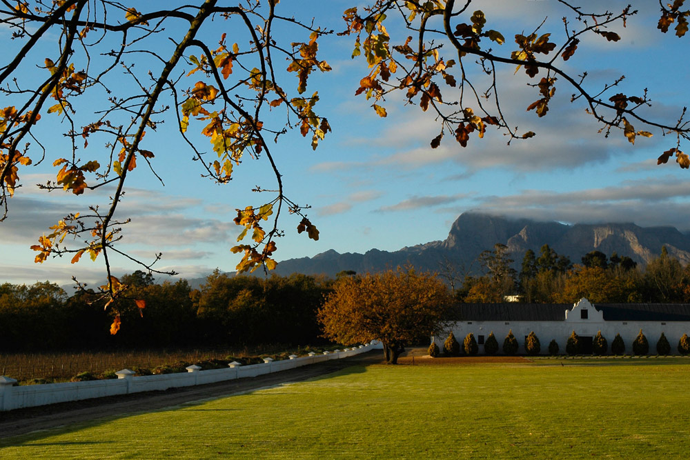 plaisir de merle wine estate in franschhoek